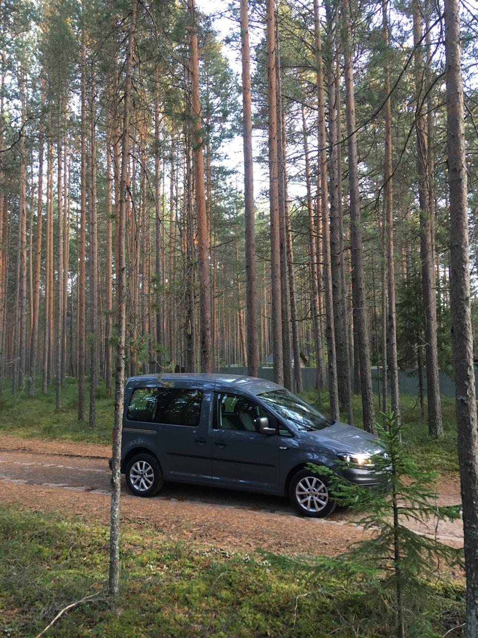 Машины похожие на Лада Ларгус - Volkswagen Caddy